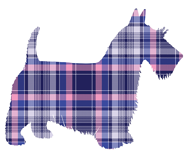 BluePinkPlaidScottie600